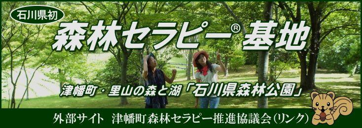 森林 山 キャンプ 場 公園 三国 県 石川